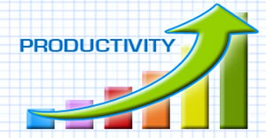 Productivity Management for Fleets